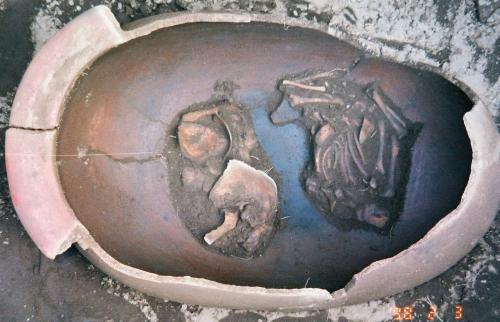 Infant skeleton in burial urn